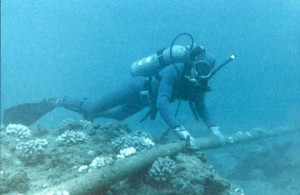 Worlds-Largest-Submarine-Cable